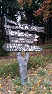 2016.10.29 - Klub ekologiczny: Rezerwat Bukowa Kalenica