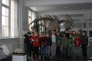 2017.02.01 - Lekcja w Muzeum Przyrodniczym